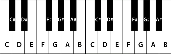 2 octave keyboard